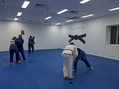 Teens and Adults Judo image